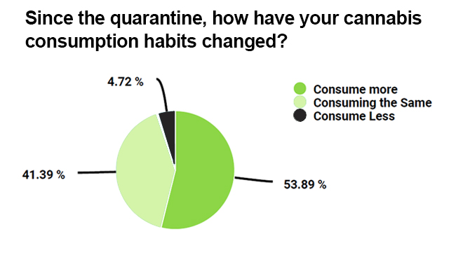How have cannabis consumption habits changed during covid-19
